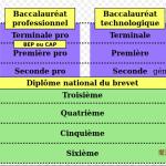 CAP 學制圖