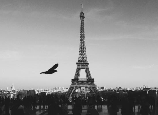 ELFE 巴黎法語學院